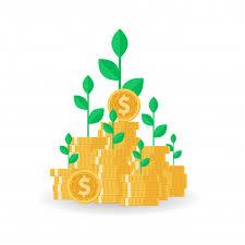 صندوق سرمایه گذاری مختلط چیست؟